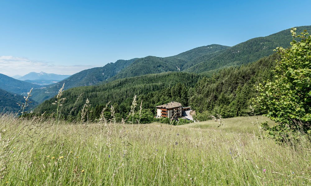 Spend your holiday in the nature hotel South Tyrol