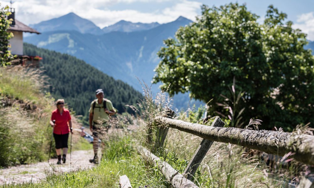 Nordic Walking in the Dolomites