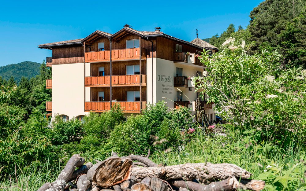 Comfortable accommodation in Val di Fiemme